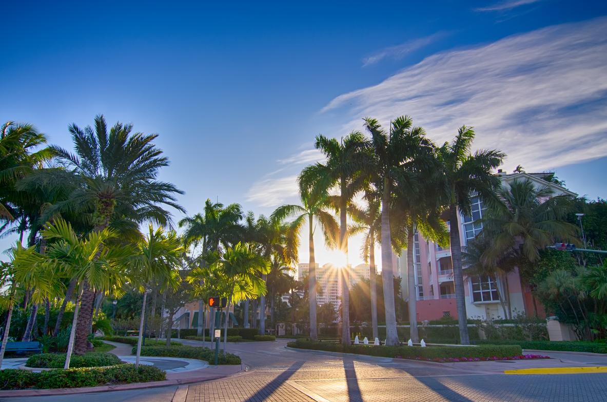 Florida title search